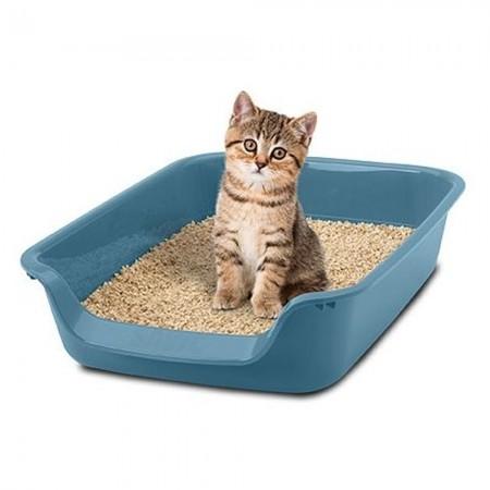 Arenero para gatitos Junior
