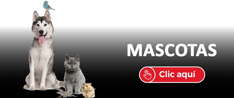 Tienda online de accesorios de mascotas